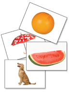 Photo FUNtastic Language Cards - Special - SAVE $70 dollars online